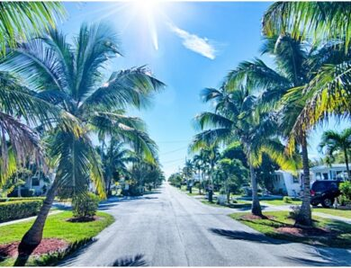 When Exactly Is the Best Time to Visit Florida?