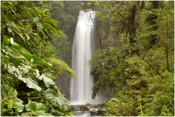 3 Tips for Planning the Ultimate Costa Rica Vacation