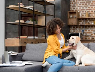 Pet-Friendly Apartments: 5 Top-Line Things You Need to Know